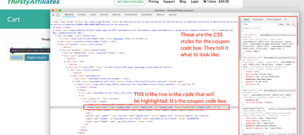 Inspect Developer Tools For Coupon Code Box Styles