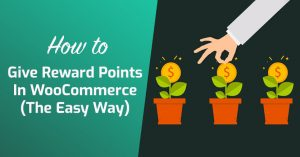 How To Give Reward Points In WooCommerce (The Easy Way)